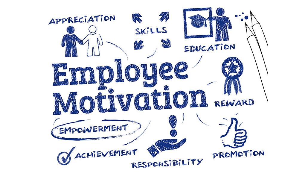 Employee Motivation & Work Ethic